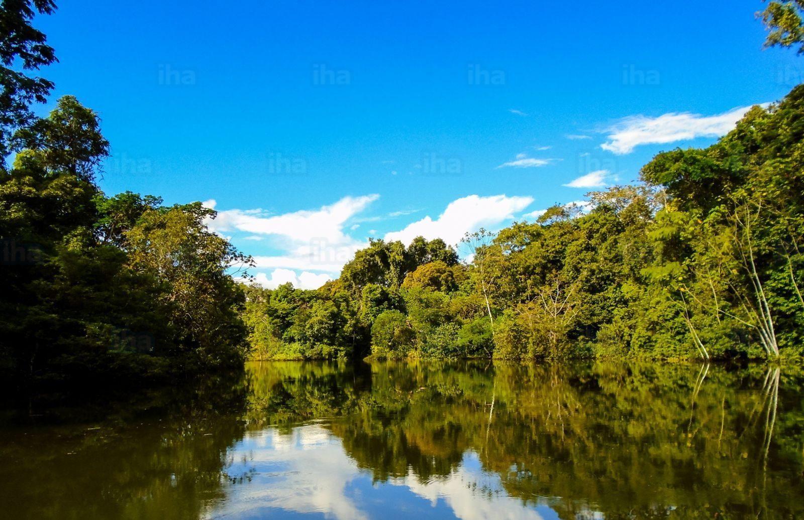realismo magico america del sud - rio delle amazzoni